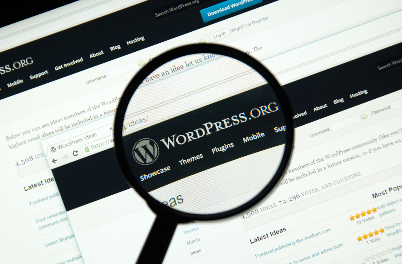 Why You Shouldn't Create a WordPress Website